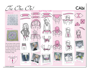 Digital Illustrations and one sheet layout for CAbi