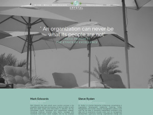 Web Design Portfolio - Crystal Hospitality Group website by Hearts and Laserbeams